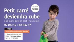 Petit carré deviendra cube (2016)