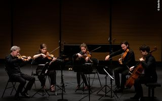 """Dissonance Chamber Music Series"" en streaming ! (Le Havre)"