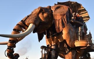 Découvrir Nantes à dos d'éléphant