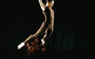 L'art de la danse en solo