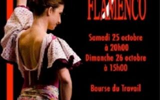 Zarzuelas y Flamenco