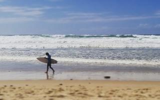 Le paradis des surfers