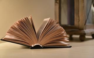 Des livres pour accompagner l'automne