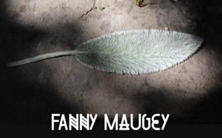 Derniers jours pour l'exposition Fanny Maugey : contre-feu, à Belfort