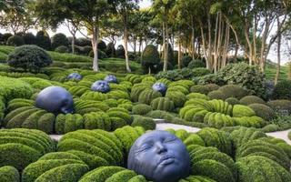 Rêver devant les jardins d'Etretat