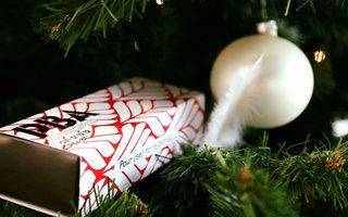 Offrir de la culture pour Noël