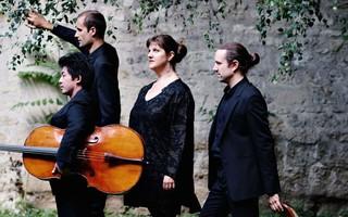 Célébrer la musique classique en Wallonie