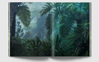 Jungles de papier