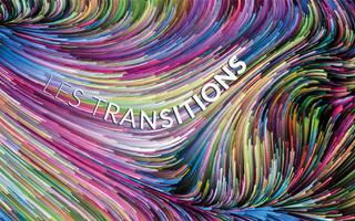 "Pascal Chabot, ""L'Age des transitions"""