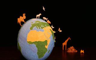 La puce, le chameau et les uatres