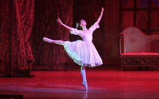 Casse-Noisette : Saint-Petersburg Ballets Russes