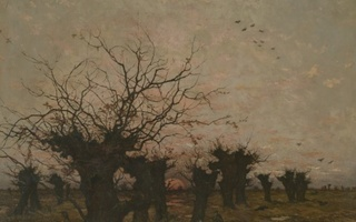 Visio-conférence Dans les yeux de Van Gogh