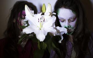 Wonderland - Sylvain Huc