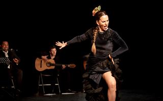Tablao danse flamenca La Fabia