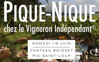Pique Nique des vignerons Indépendants : Entre vignes et taureaux