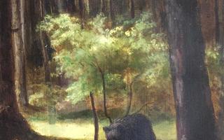 L'ours et le peintre