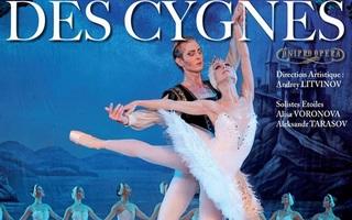 Le Lac des Cygnes : Kiev City Théâtre Ballet & Théâtre Opéra et Ballet de Dnepr
