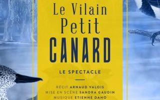 LE VILAIN PETIT CANARD / Sandra Gaudin