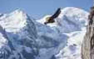 Chamonix Extreme