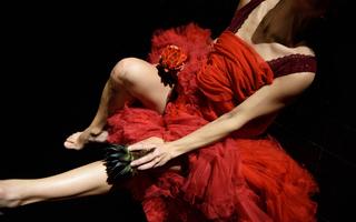 OLGA PERICET : La Espina que quiso ser flor, o la flor que soñó con ser bailaora