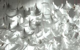 Poètique de l'air - Isa Barbier