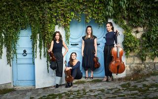 Amadeus - La Flûte enchantée : Quatuor Zaïde