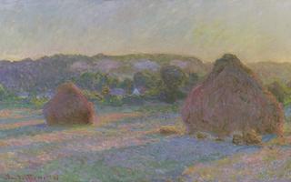 """Conférence d'Histoire de l'Art """" Lumière ! """":  Monet et le voyage de l'œil"""