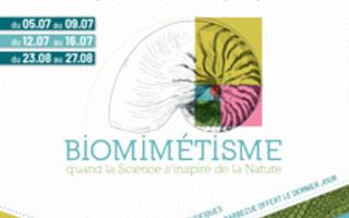 Stage - BIOMIMÉTISME, quand la Science s'inspire de la Nature