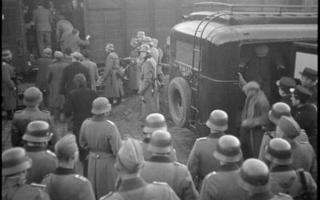 Janvier 1943, L'opération Sultan