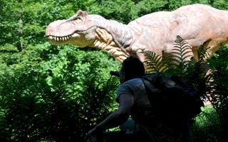 Parc du Dino-Zoo