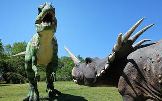 Balade au Préhisto Dino Parc